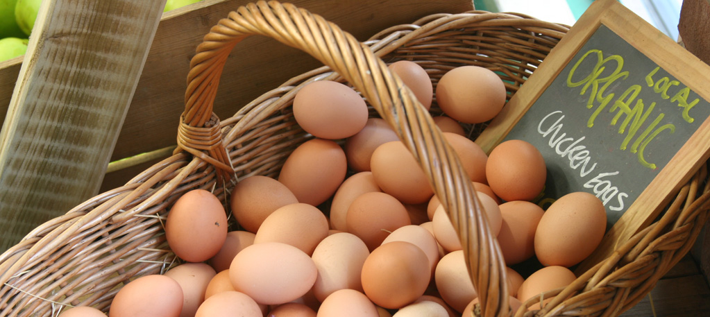 Local Free Range and Organic Eggs
