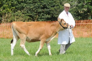 West Show Jersey 2012
